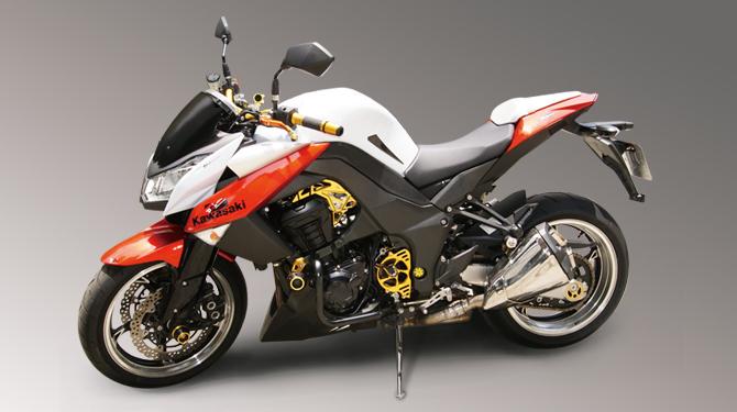 DIMOTIV Moto Gene Z1000